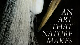 An Art That Nature Makes - The Work of Artist Rosamond Purcell